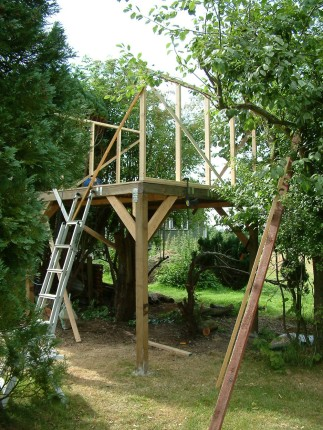 Treehouse 06