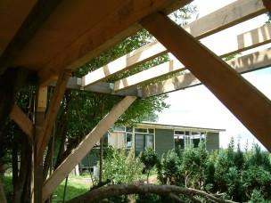 Treehouse 16