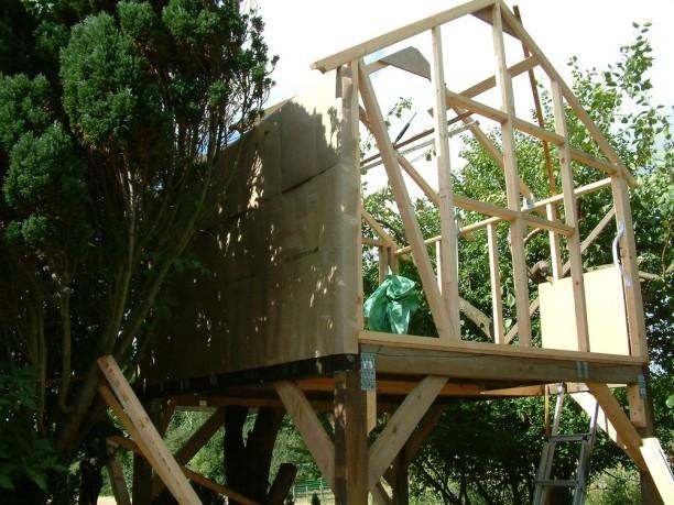 Treehouse 19