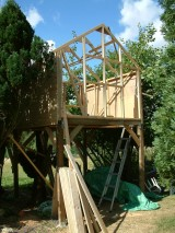 Treehouse 20