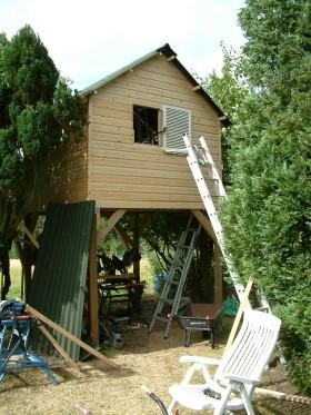 Treehouse 31