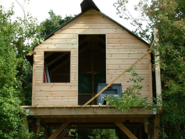 Treehouse 35