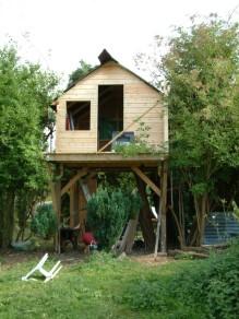Treehouse 36