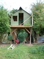 Treehouse 37