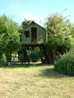 Treehouse 38