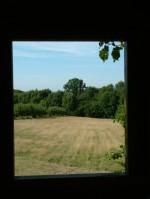 Treehouse 39