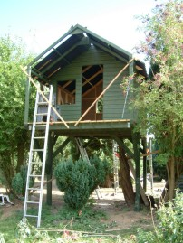 Treehouse 41