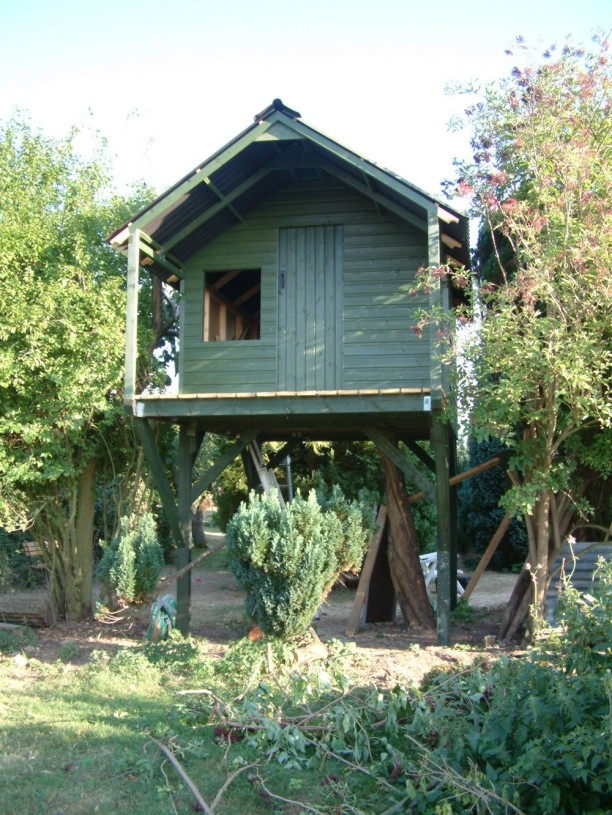 Treehouse 43
